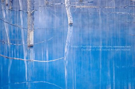 blue pond_01.jpg
